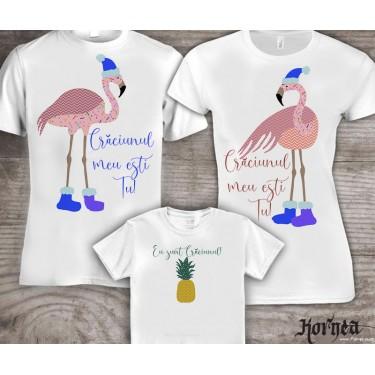 Set Tricouri familie - Christmas flamingo